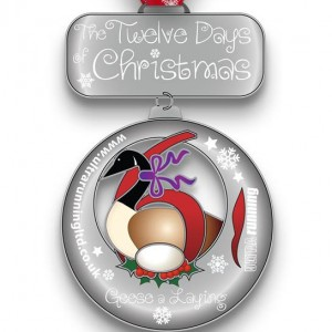 2015 12 Days of Christmas Day 6 Virtual Race
