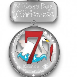 2015 12 Days of Christmas Day 7 Virtual Race